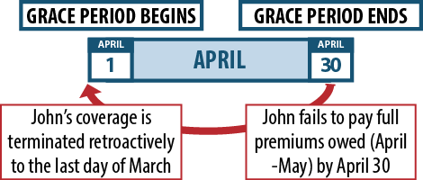 Key Facts: Premium Payments and Grace Periods | Beyond the Basics